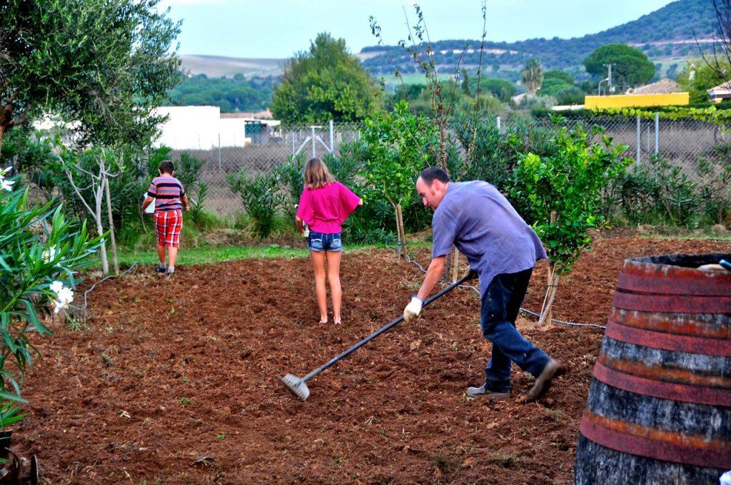 Planting Seeds1